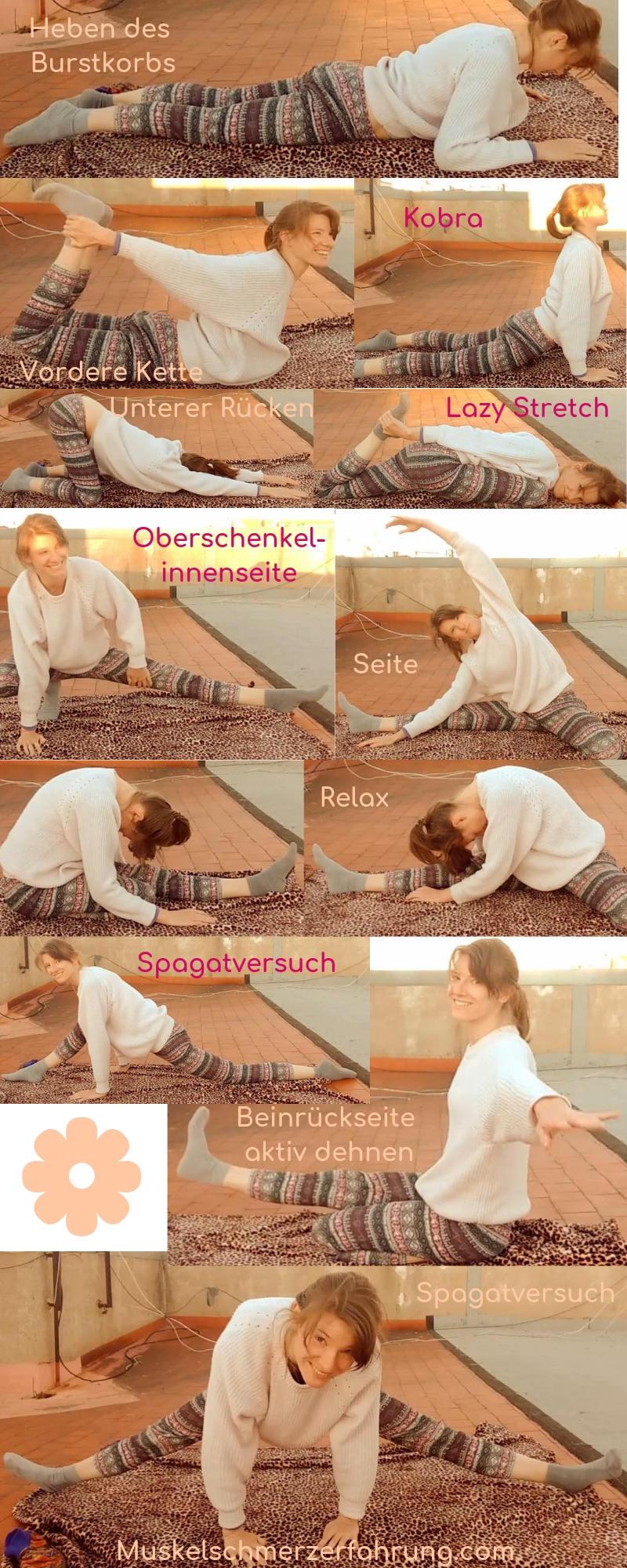 Stretch Infografik Spagat, Heben des Brustkorbs, vordere Kette, unterer Rücken, Beininnenseite Muskelschmerzerfahrung