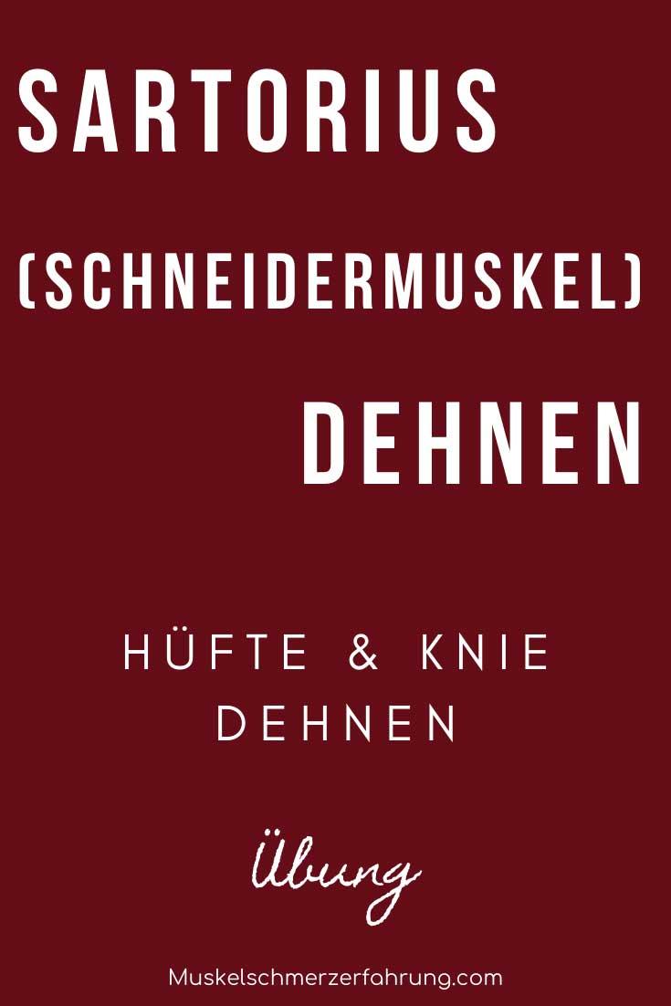 Sartorius (Schneidermuskel), Hüfte & Knie dehnen Übung