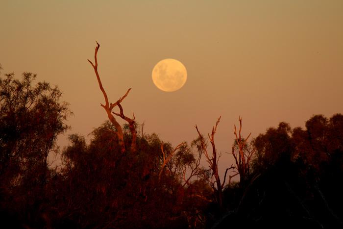 Licht und Schatten, Mond bei Sonnenuntergang