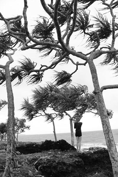 Schwarz-weißer Wind